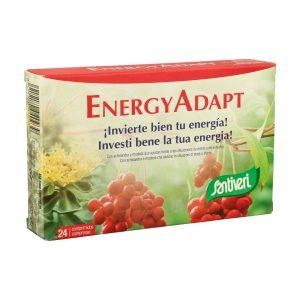 EnergyAdapt