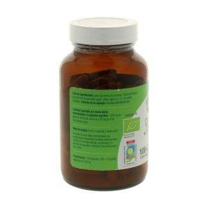 Cúrcuma y pimienta Bio – 120 cáps.