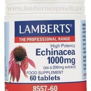 Equinácea 1.000 mg más Vitamina C 40 mg y Zinc 2,5 mg
