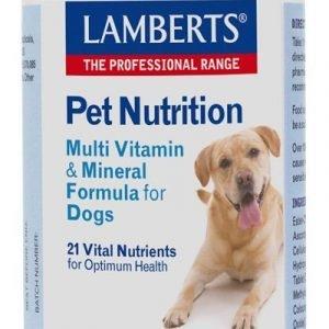 Multivitaminas y Minerales para perros