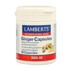 Jengibre 14.400 mg como extracto de la raíz