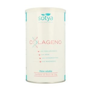Colageno + Ácido Hialurónico + Msm – 400 gr.