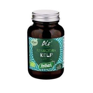 Alga Kelp – Quanticum