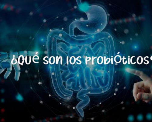 Probióticos: qué son, para qué se usan y cuándo hay que tomarlos